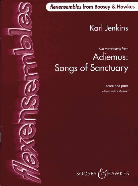 Cover von Adiemus: Songs Of Sanctuary