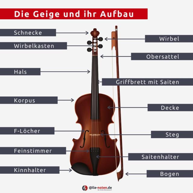 Infografik: Aufbau der Geige