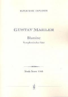 Blumine' Symphonischer Satz